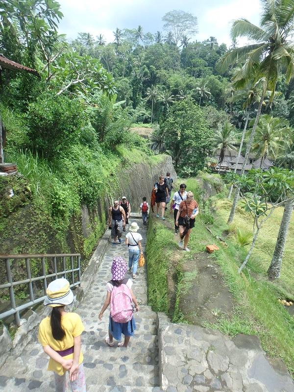 グヌンカウイ遺跡の石段の道