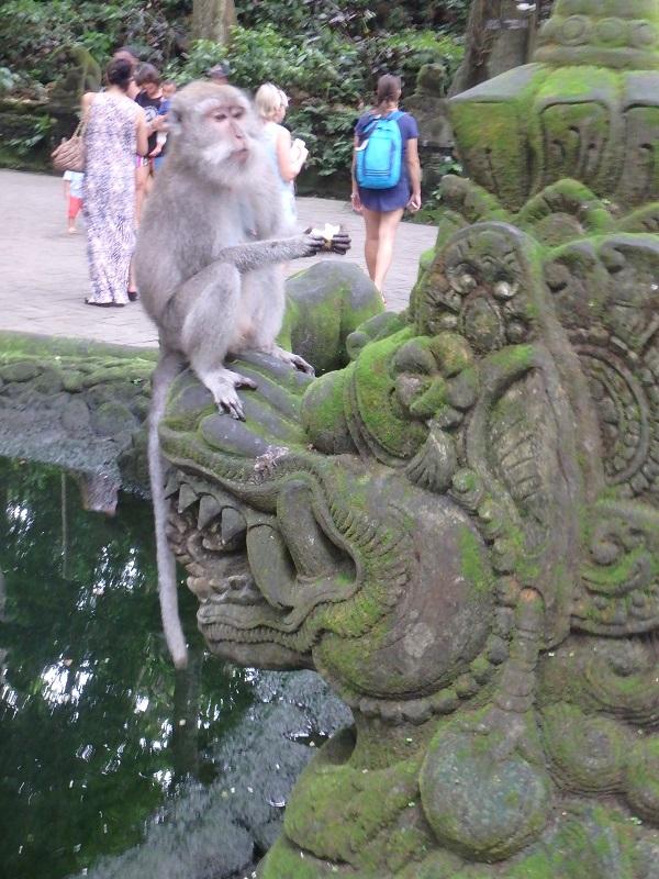 ウブドの猿園モンキーフォレスト