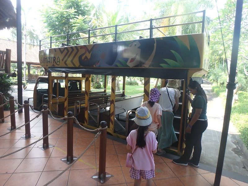 バリ動物園の園内バス